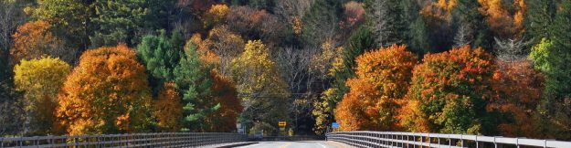 cropped-cropped-crossing-callicoon-to-pa-bridge-10-20141.jpg